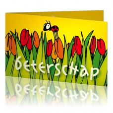 Jij is Liefje: Beterschap tulpen